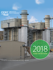 odec year in review 2018